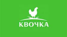 Kvochka